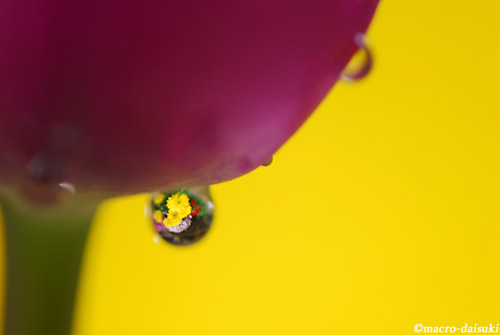0208_120129_home_017