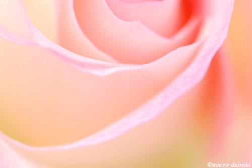 0525_100517_bunkaen_160